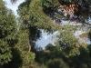 0052002-05-scenery-07